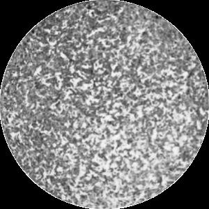 Application AEC graylevels